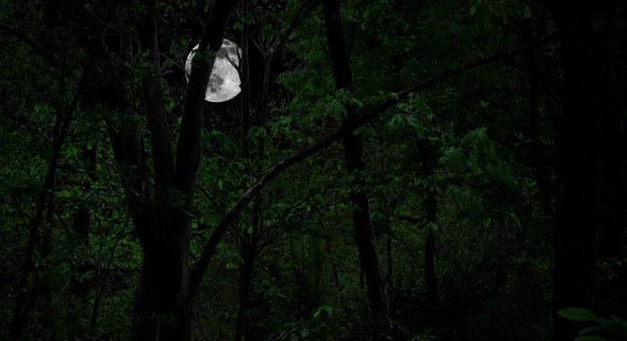 映画『真夜中の五分前』のフル動画を無料で見るならYoutube(ユーチューブ)やDailymotion、Pandoraや9tsuなどでいいのでは?